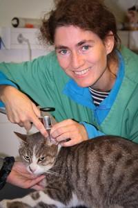 Dr Morgane Le Cousteur